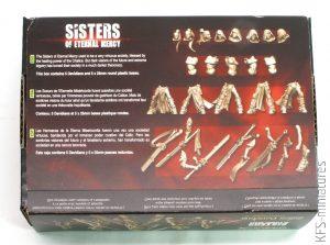 28mm Sisters Davidians - Raging Heroes